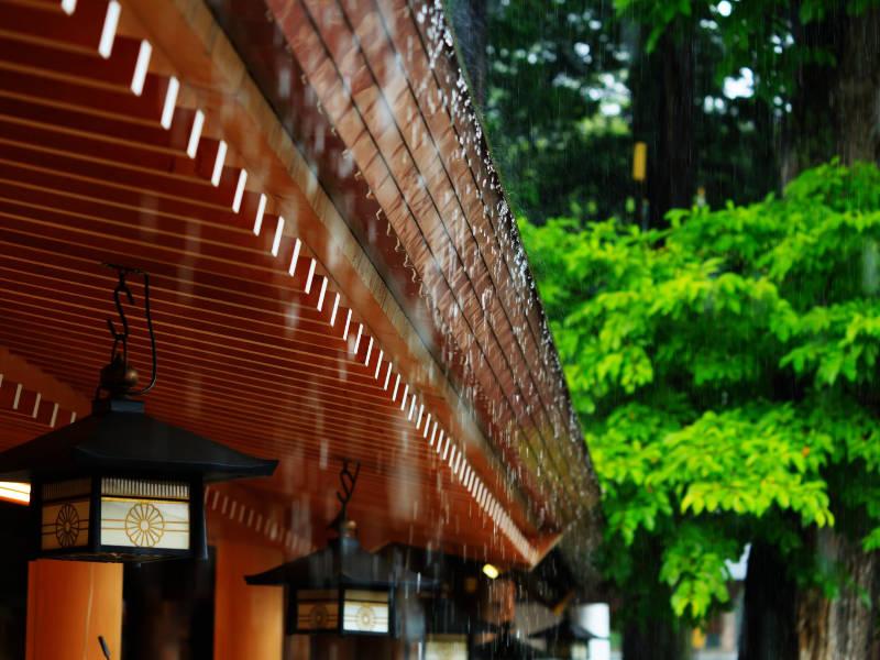 雨の日の神社の参拝についてのアイキャッチ画像