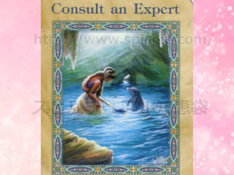 左のカードを選んだ方へ consult an expert 専門家に聞きましょう。