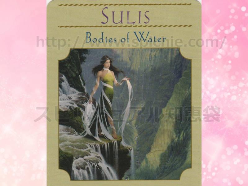 右のカードを選んだあなたへのメッセージ SULIS Bodies of Water スリス 水の集まるところ のカード画像