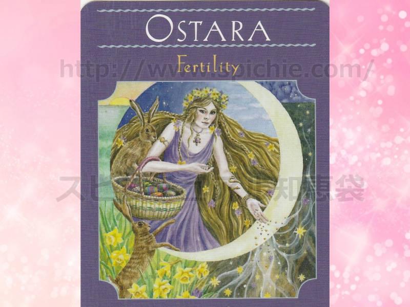 右のカードを選んだあなたへのメッセージ fertility 豊かさ のカード画像