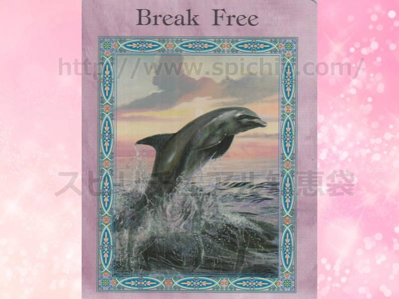 左のカードを選んだあなたへのメッセージ Break Free 殻を破る のカード画像