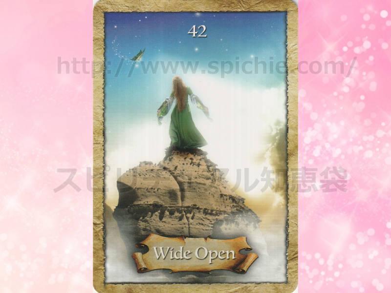 中のカードを選んだあなたへのメッセージ wide open 大きく開かれて のカード画像