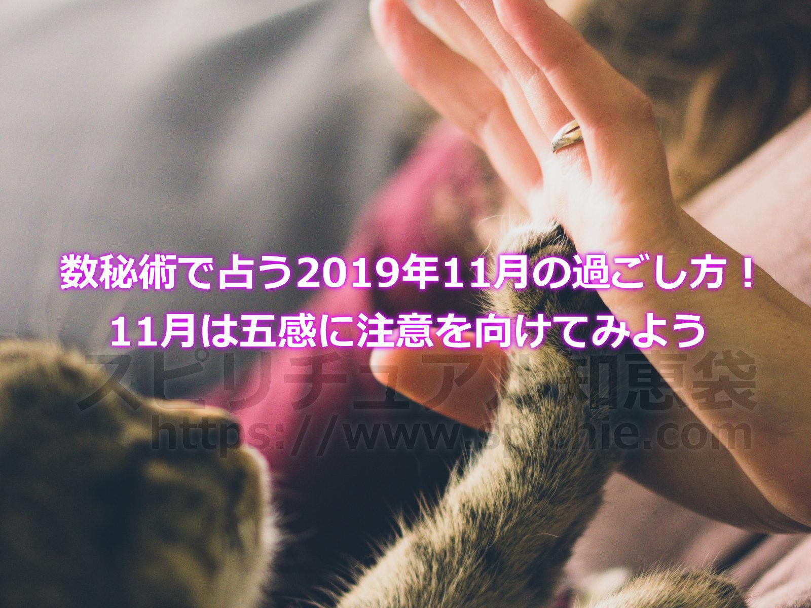 数秘術で占う2019年11月の過ごし方!11月は五感に注意を向けてみようのアイキャッチ画像